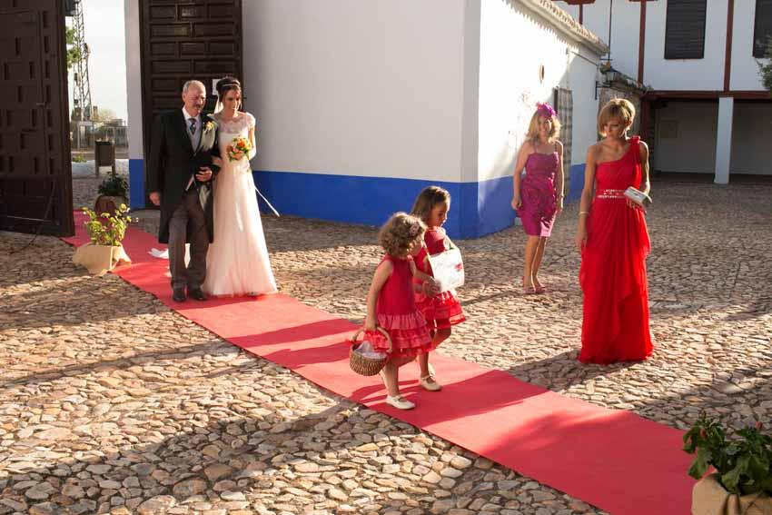 Novia y su padre entrado en la iglesia sobre alfombra roja. Fotos de bodas