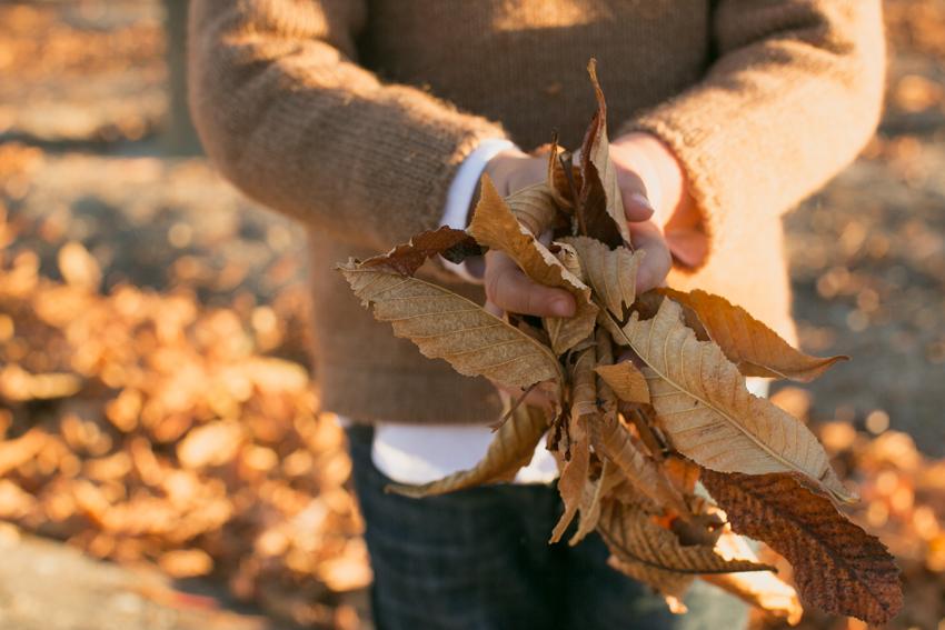 Con las manos llenas de hojas. Reportaje fotográfico infantil